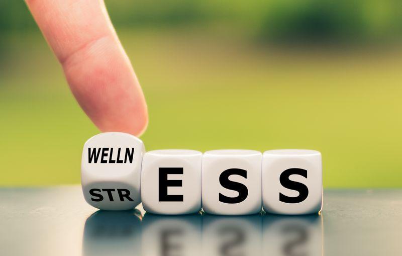 Mental Wellness Dec 2020 – resized